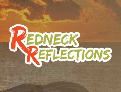 Article: Redneck Reflections